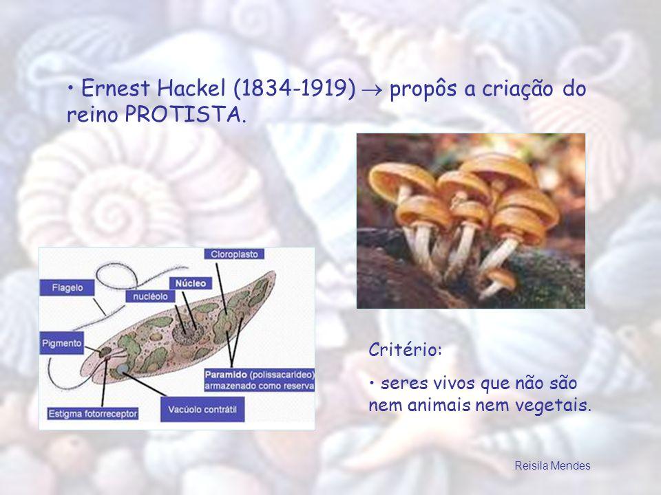 Ernest Hackel (1834-1919)  propôs a criação do reino PROTISTA.