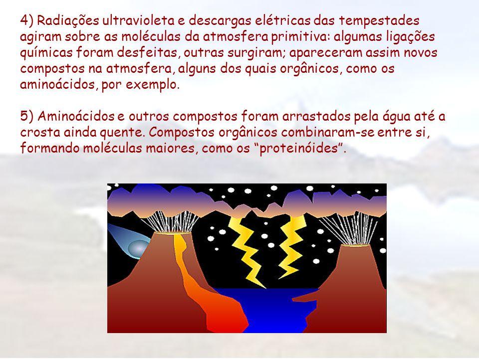 4) Radiações ultravioleta e descargas elétricas das tempestades agiram sobre as moléculas da atmosfera primitiva: algumas ligações químicas foram desfeitas, outras surgiram; apareceram assim novos compostos na atmosfera, alguns dos quais orgânicos, como os aminoácidos, por exemplo.