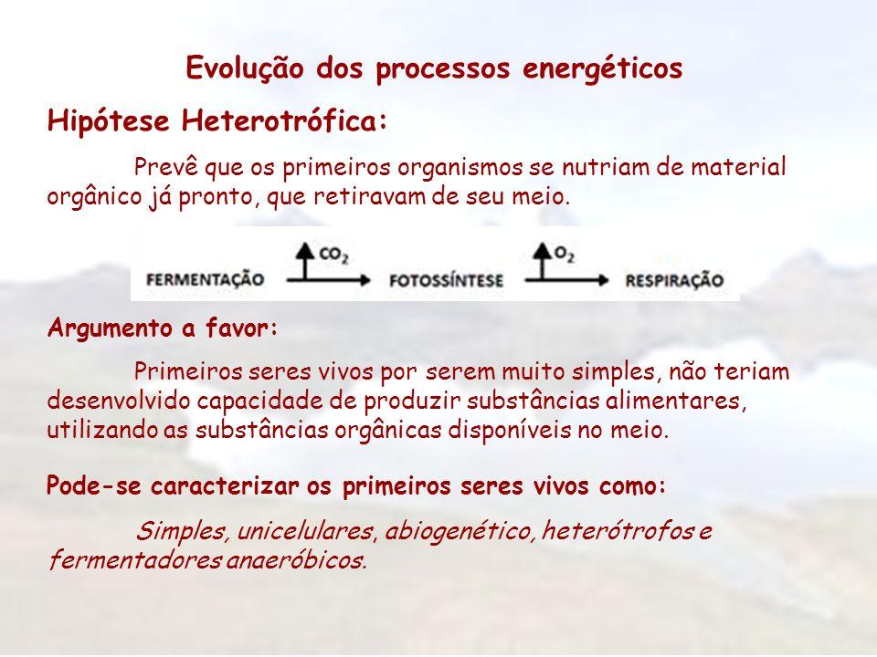 Evolução dos processos energéticos