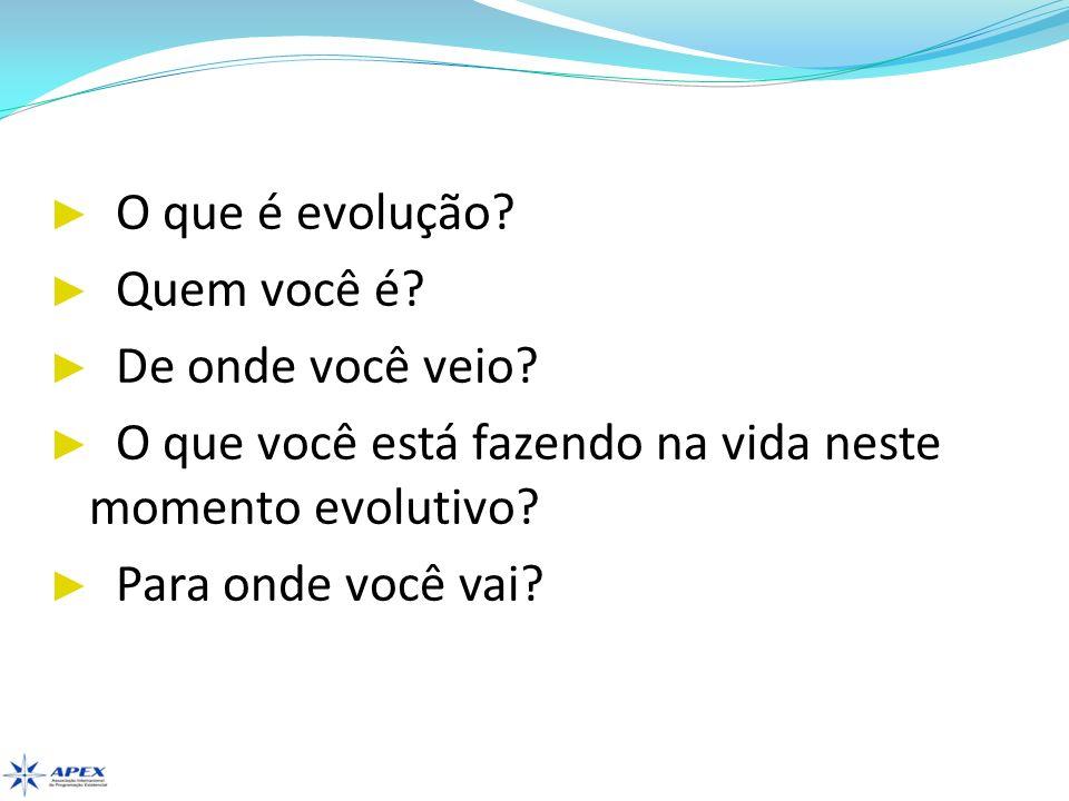 O que é evolução Quem você é De onde você veio O que você está fazendo na vida neste momento evolutivo