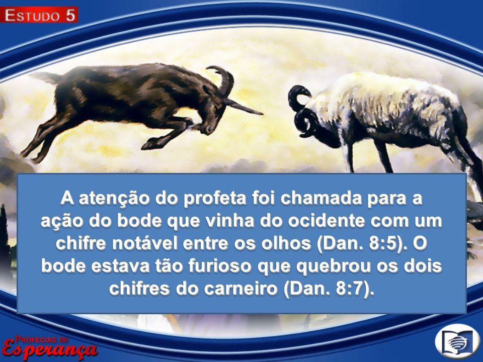 A atenção do profeta foi chamada para a ação do bode que vinha do ocidente com um chifre notável entre os olhos (Dan.