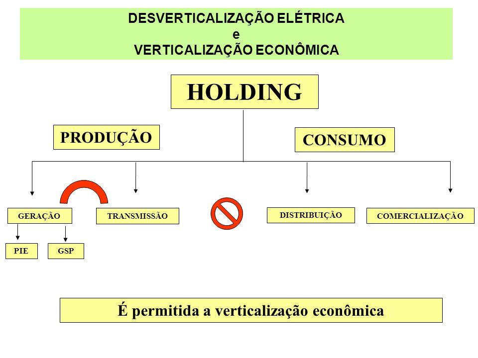 DESVERTICALIZAÇÃO ELÉTRICA e VERTICALIZAÇÃO ECONÔMICA