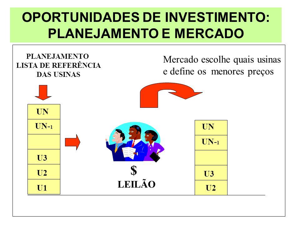 OPORTUNIDADES DE INVESTIMENTO: PLANEJAMENTO E MERCADO
