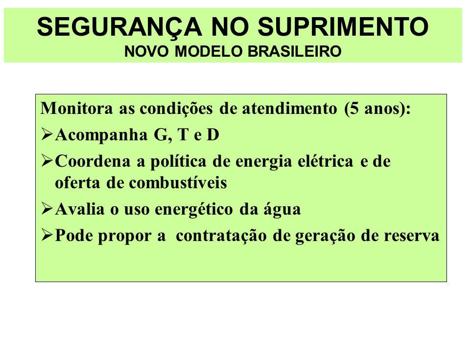SEGURANÇA NO SUPRIMENTO NOVO MODELO BRASILEIRO