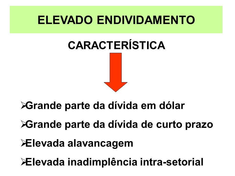 ELEVADO ENDIVIDAMENTO