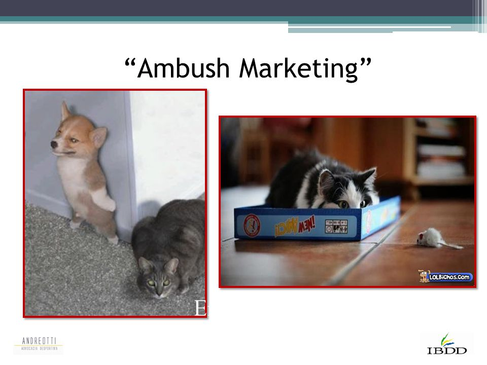 Ambush Marketing Emboscada