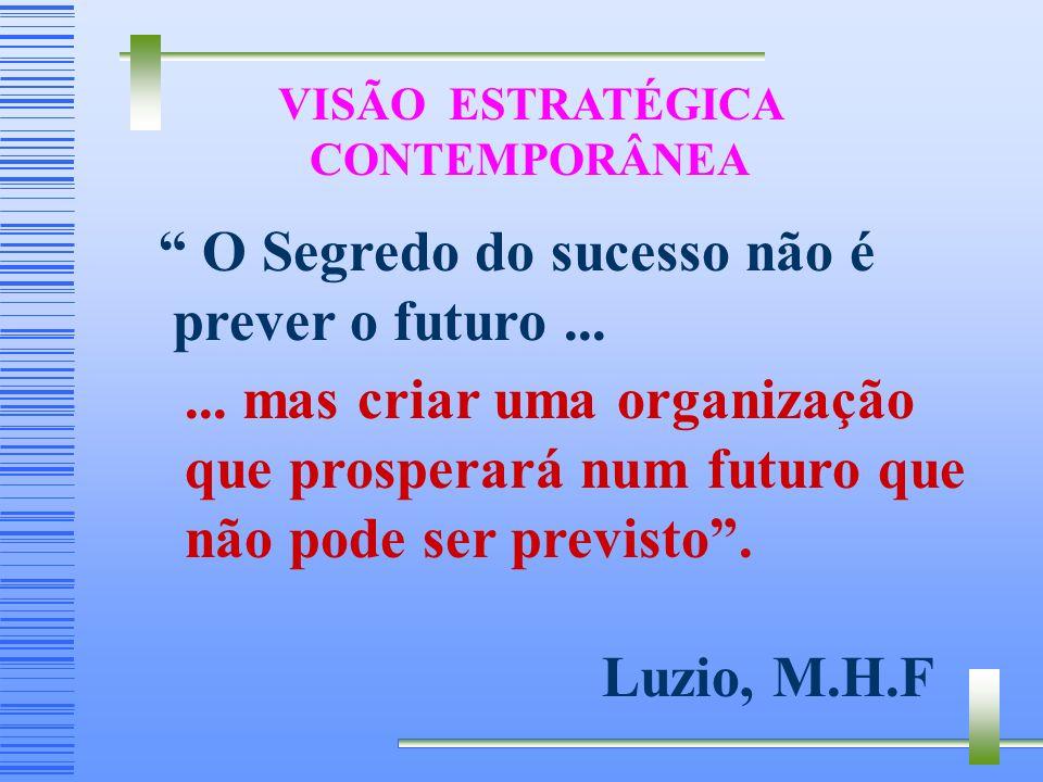 VISÃO ESTRATÉGICA CONTEMPORÂNEA