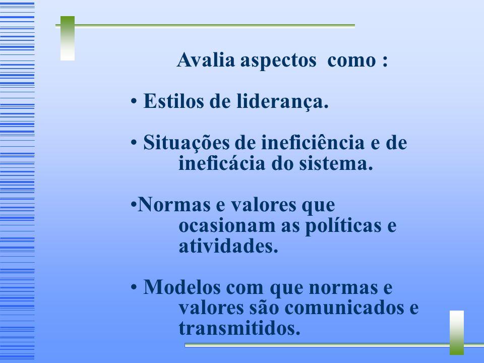 Avalia aspectos como : Estilos de liderança. Situações de ineficiência e de ineficácia do sistema.