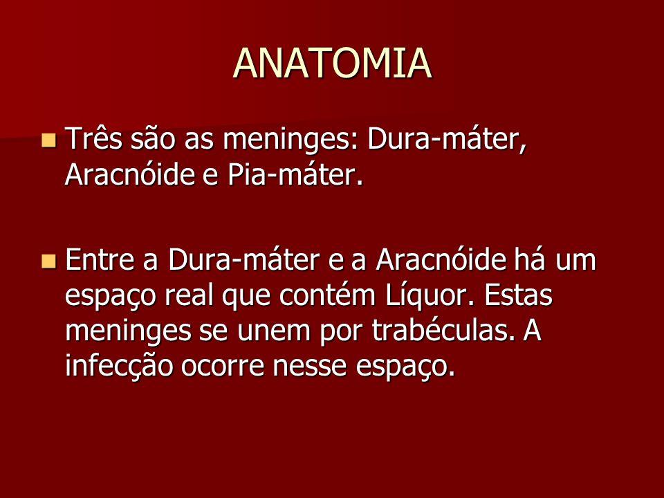 ANATOMIA Três são as meninges: Dura-máter, Aracnóide e Pia-máter.