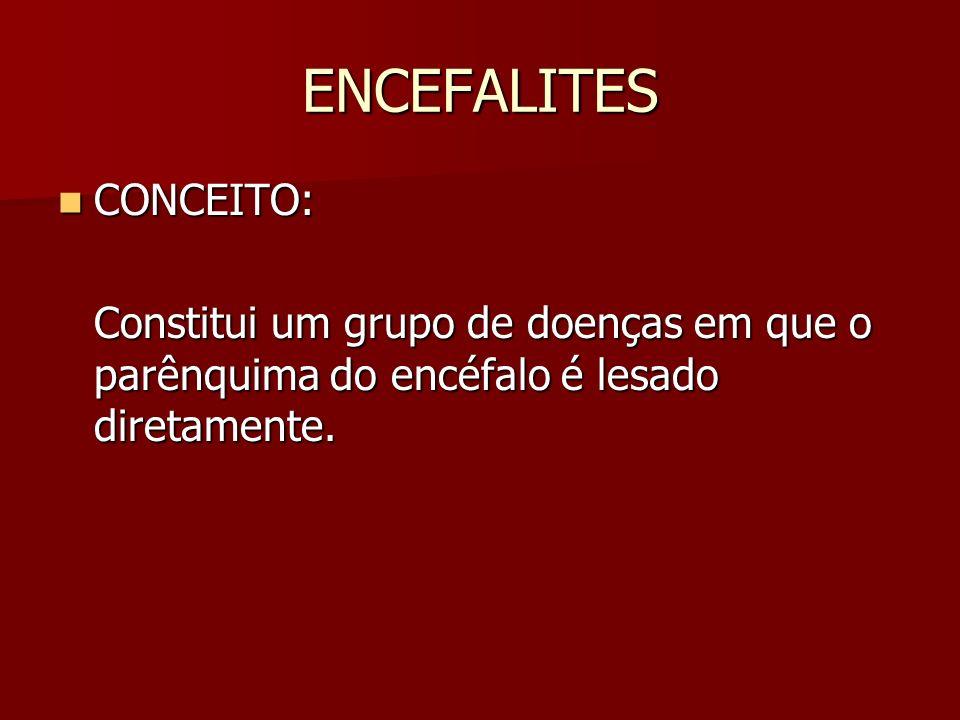ENCEFALITES CONCEITO: