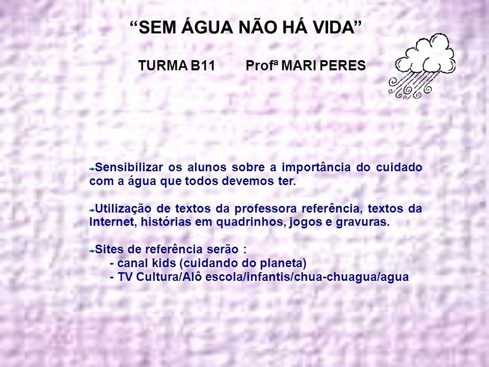 SEM ÁGUA NÃO HÁ VIDA TURMA B11 Profª MARI PERES