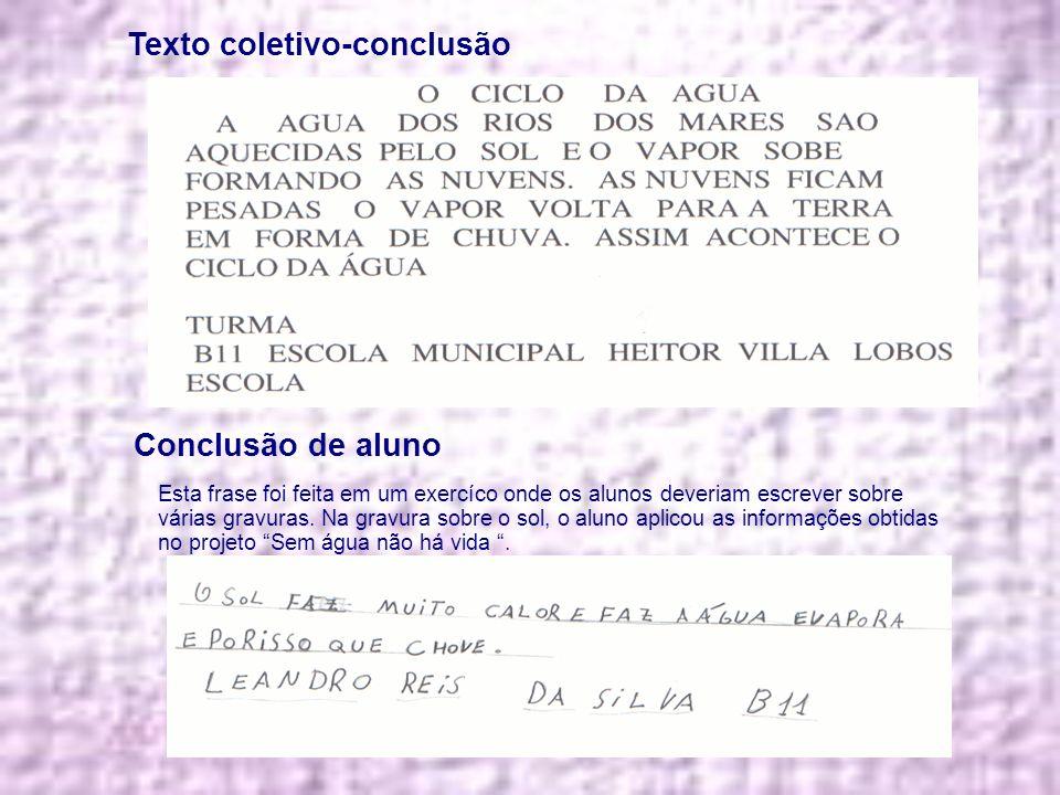 Texto coletivo-conclusão