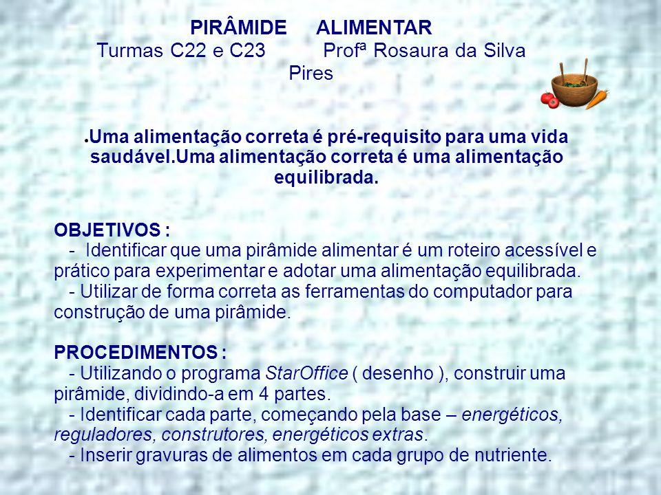 Turmas C22 e C23 Profª Rosaura da Silva Pires