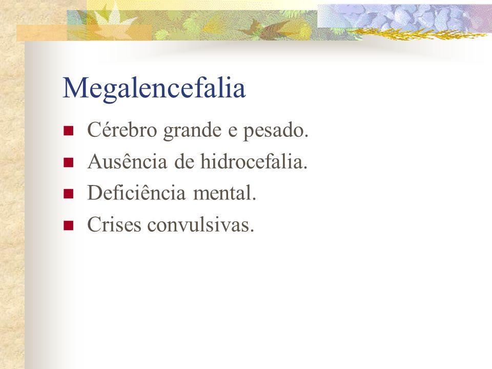 Megalencefalia Cérebro grande e pesado. Ausência de hidrocefalia.