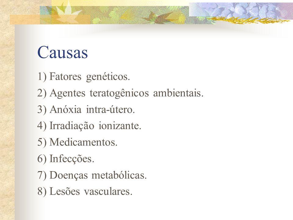 Causas 1) Fatores genéticos. 2) Agentes teratogênicos ambientais.