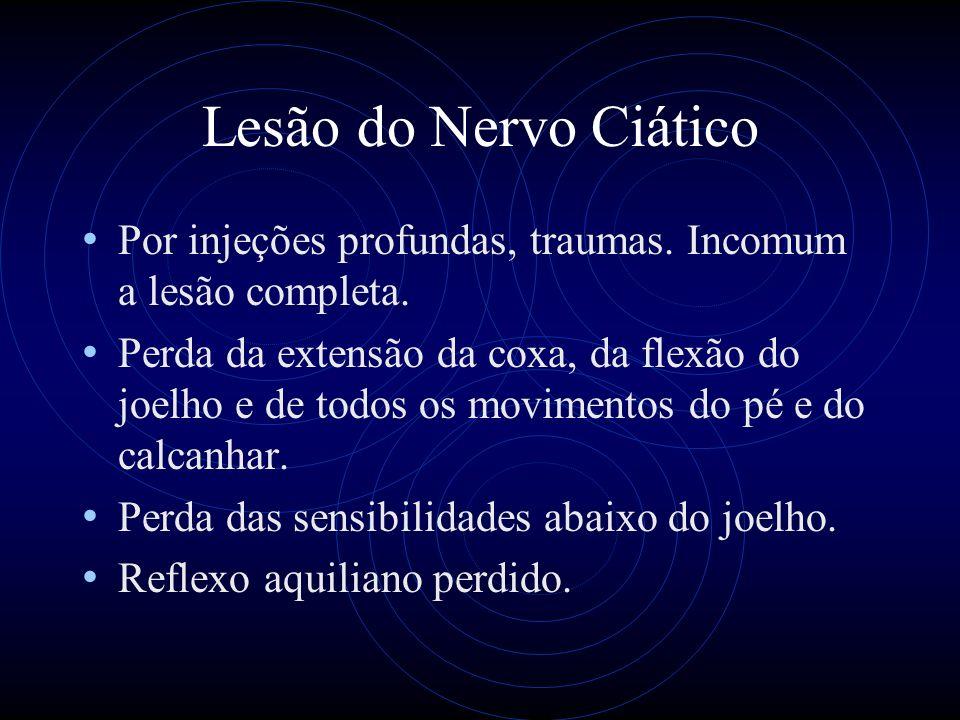 Lesão do Nervo Ciático Por injeções profundas, traumas. Incomum a lesão completa.