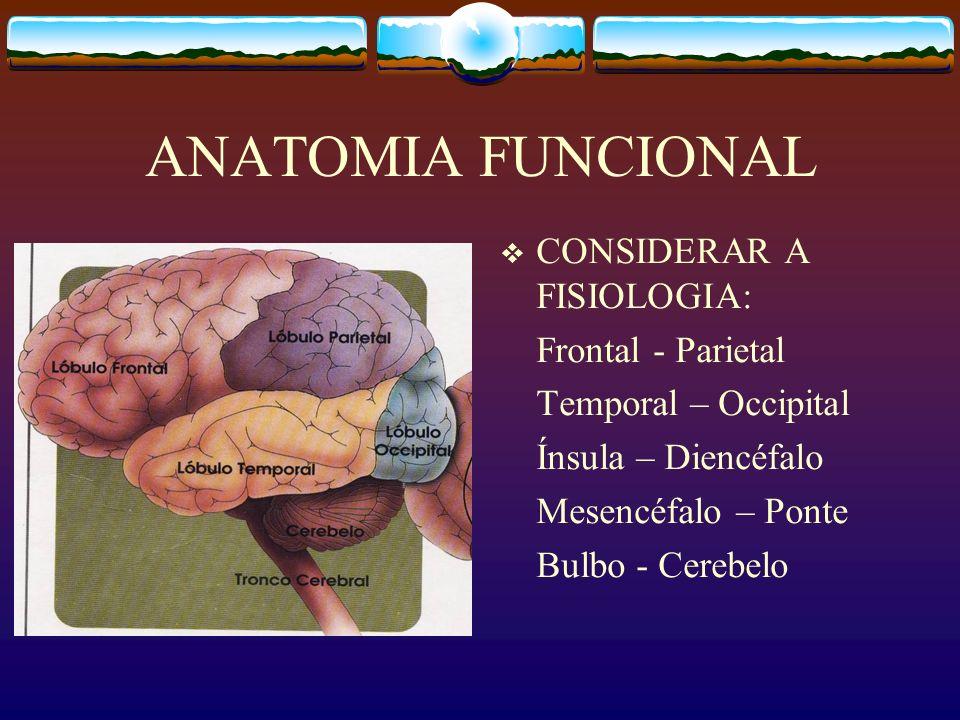 ANATOMIA FUNCIONAL CONSIDERAR A FISIOLOGIA: Frontal - Parietal