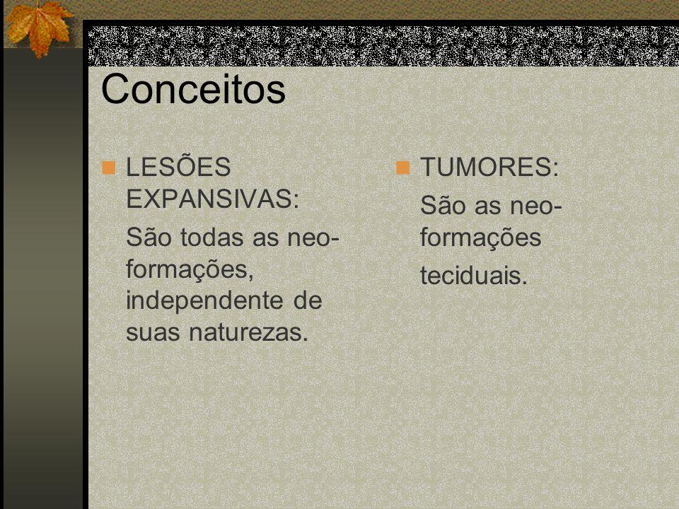 Conceitos LESÕES EXPANSIVAS: