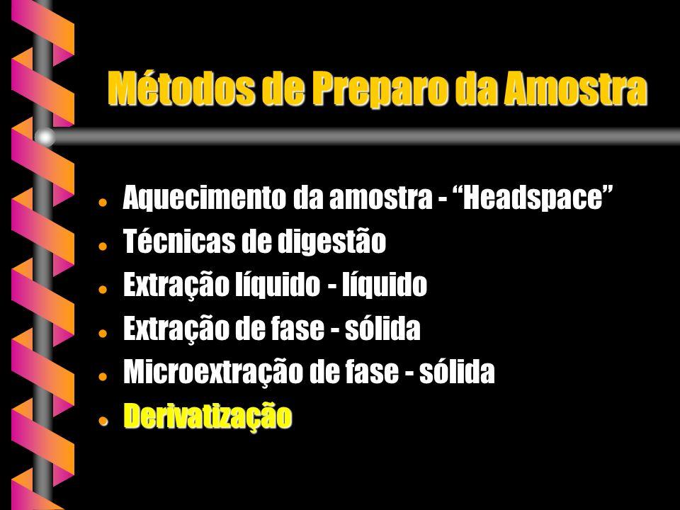 Métodos de Preparo da Amostra