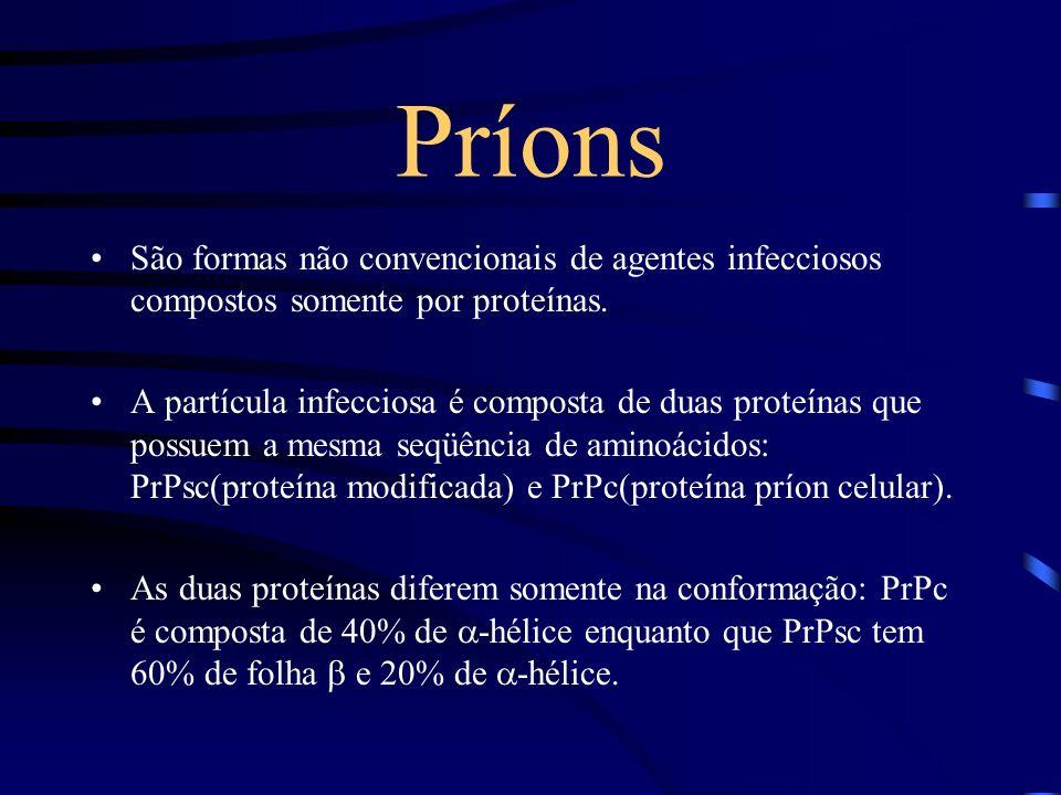 Príons São formas não convencionais de agentes infecciosos compostos somente por proteínas.