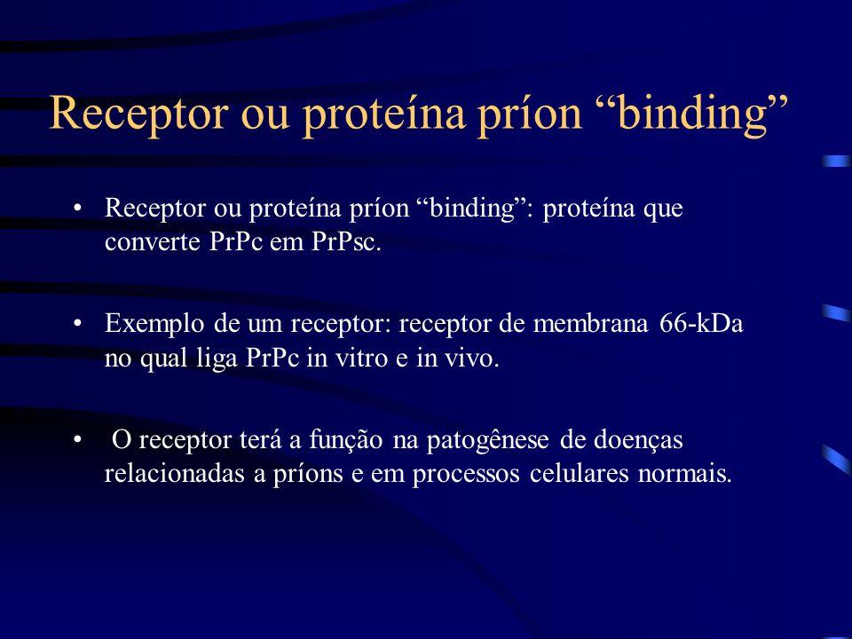 Receptor ou proteína príon binding