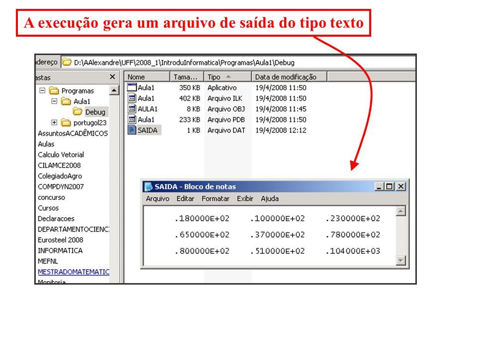 A execução gera um arquivo de saída do tipo texto
