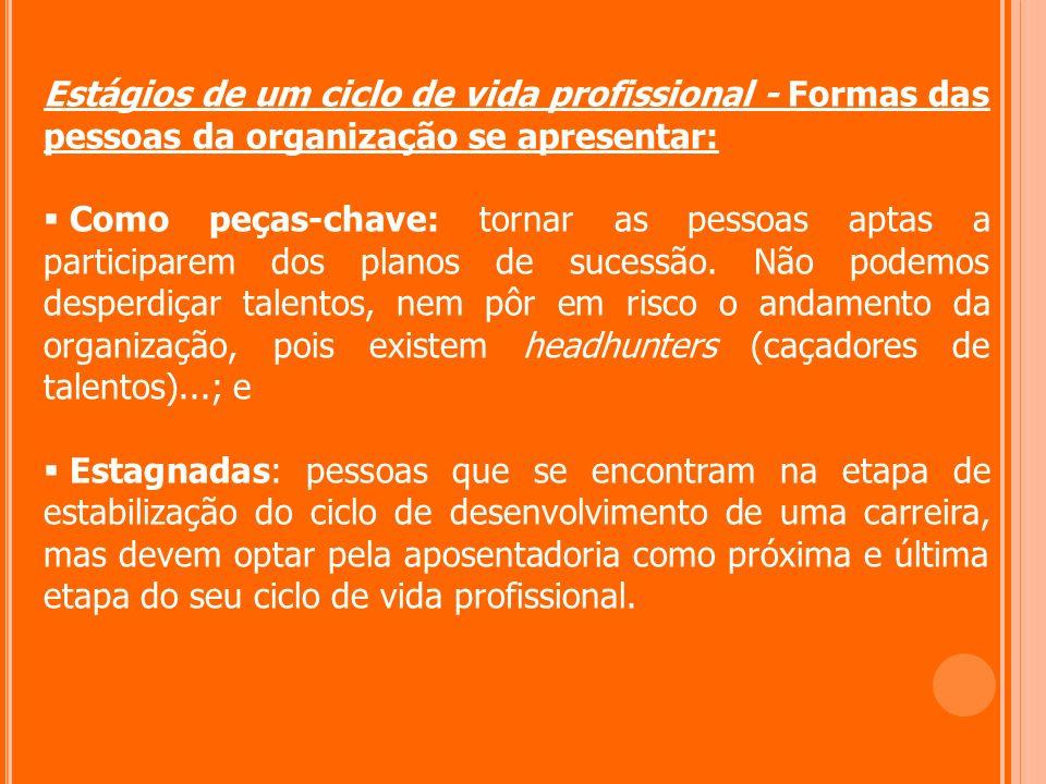 Estágios de um ciclo de vida profissional - Formas das pessoas da organização se apresentar: