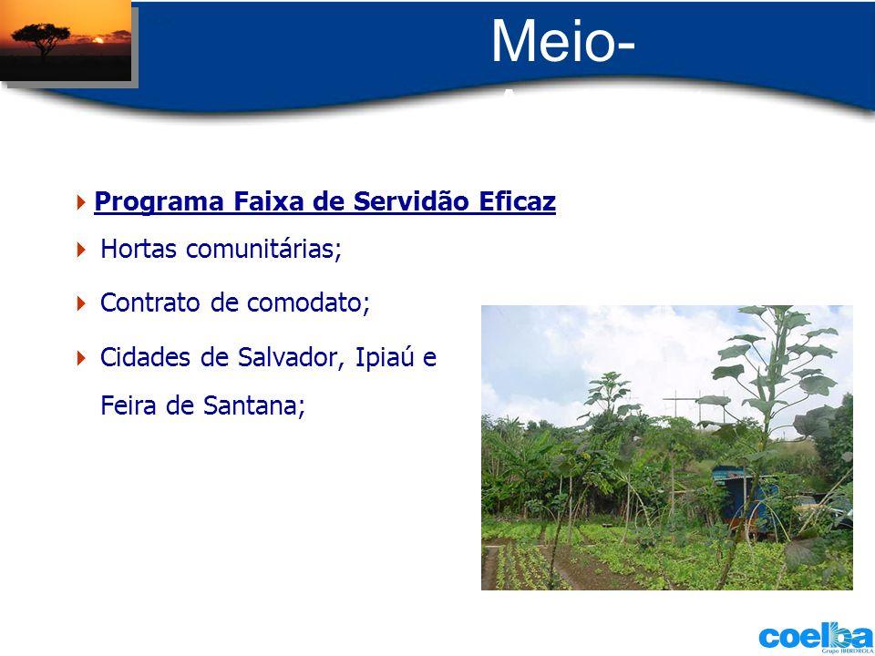 Meio-Ambiente Programa Faixa de Servidão Eficaz Hortas comunitárias;