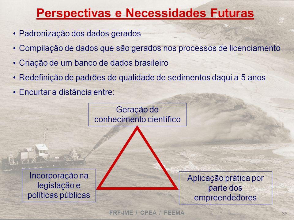 Perspectivas e Necessidades Futuras