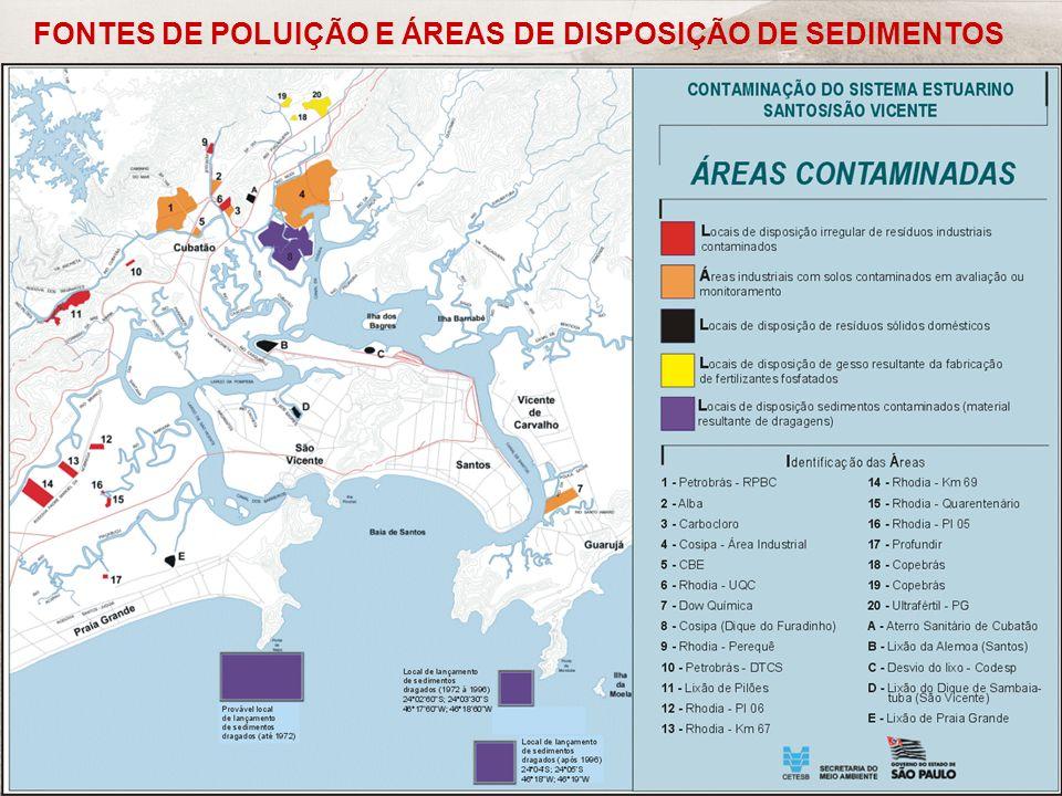 FONTES DE POLUIÇÃO E ÁREAS DE DISPOSIÇÃO DE SEDIMENTOS