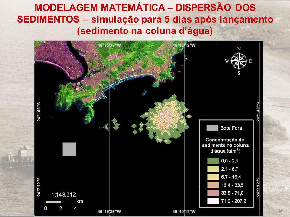 MODELAGEM MATEMÁTICA – DISPERSÃO DOS SEDIMENTOS – simulação para 5 dias após lançamento (sedimento na coluna d'água)