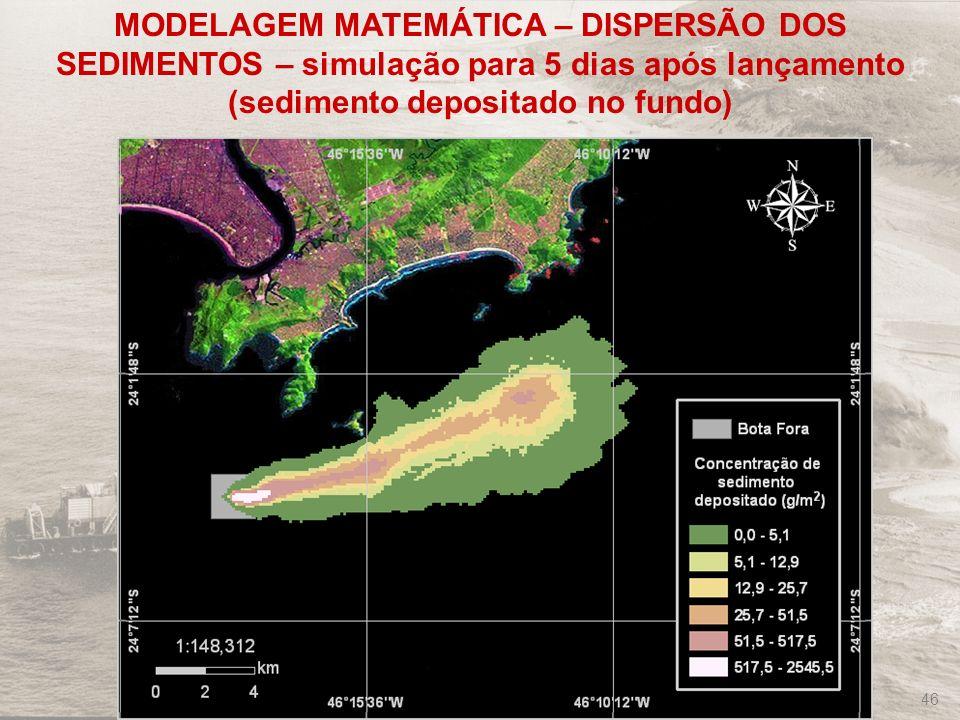 MODELAGEM MATEMÁTICA – DISPERSÃO DOS SEDIMENTOS – simulação para 5 dias após lançamento (sedimento depositado no fundo)