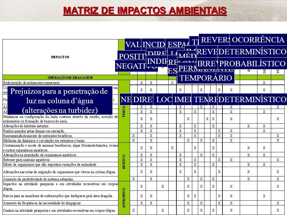 MATRIZ DE IMPACTOS AMBIENTAIS