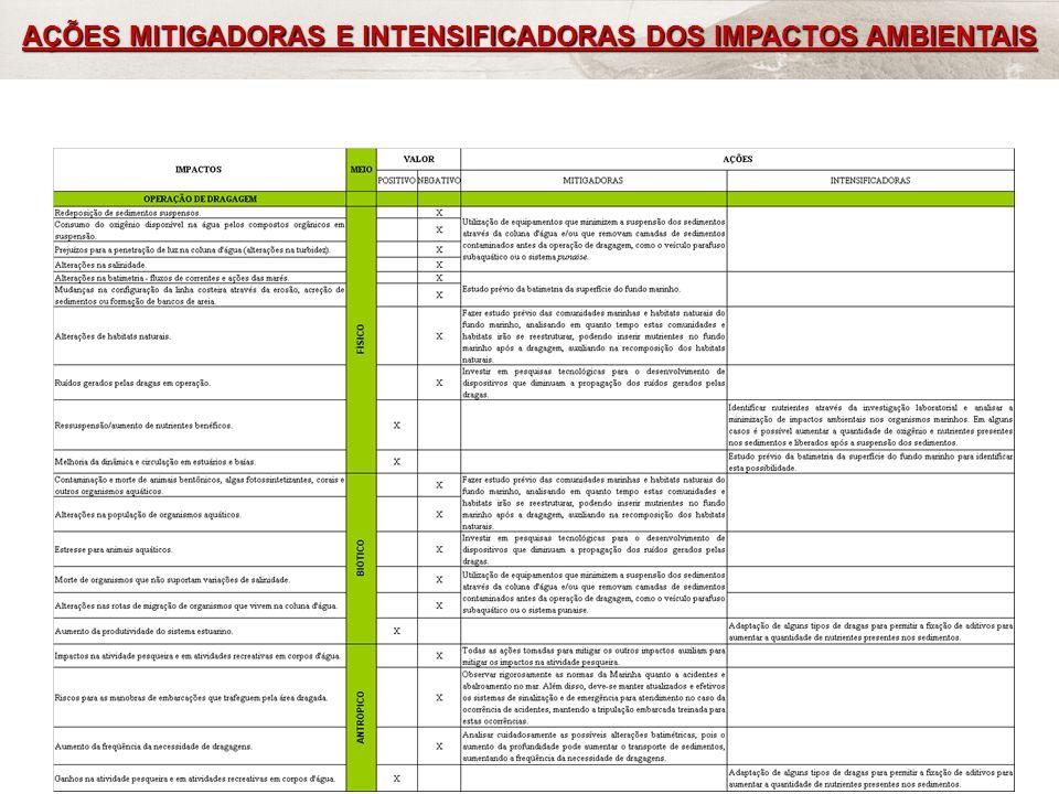 AÇÕES MITIGADORAS E INTENSIFICADORAS DOS IMPACTOS AMBIENTAIS