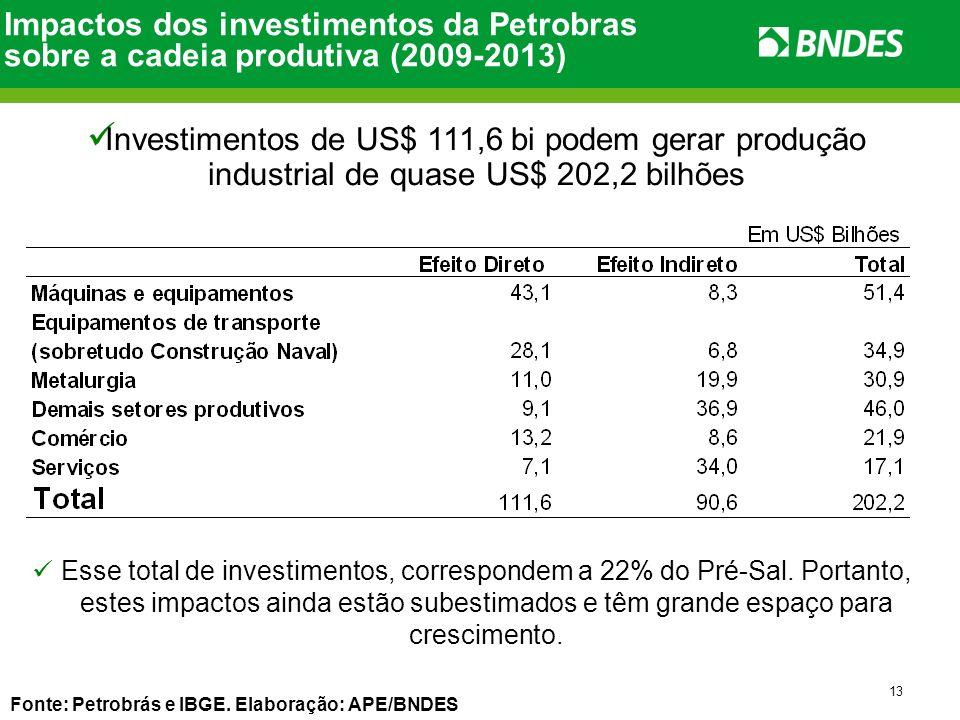Impactos dos investimentos da Petrobras sobre a cadeia produtiva (2009-2013)