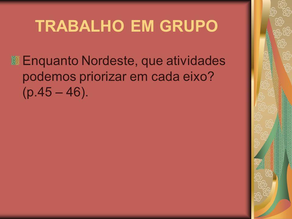 TRABALHO EM GRUPO Enquanto Nordeste, que atividades podemos priorizar em cada eixo (p.45 – 46).