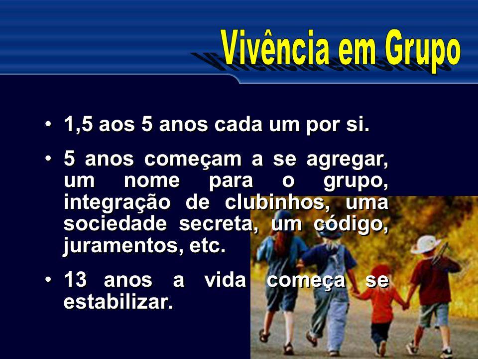 Vivência em Grupo 1,5 aos 5 anos cada um por si.