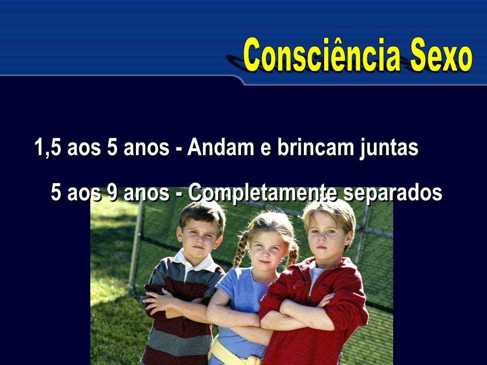Consciência Sexo 1,5 aos 5 anos - Andam e brincam juntas 5 aos 9 anos - Completamente separados