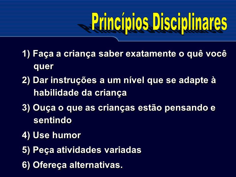 Princípios Disciplinares