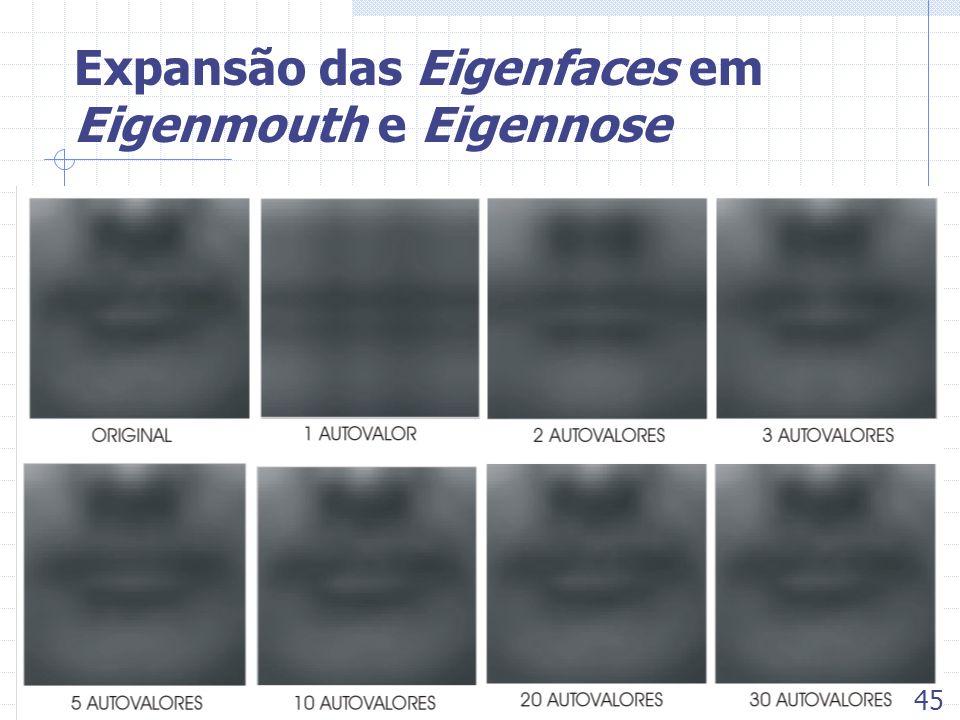 Expansão das Eigenfaces em Eigenmouth e Eigennose