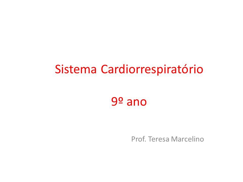 Sistema Cardiorrespiratório 9º ano