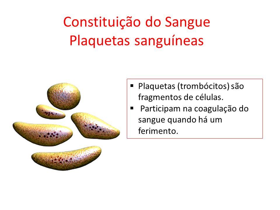 Constituição do Sangue Plaquetas sanguíneas