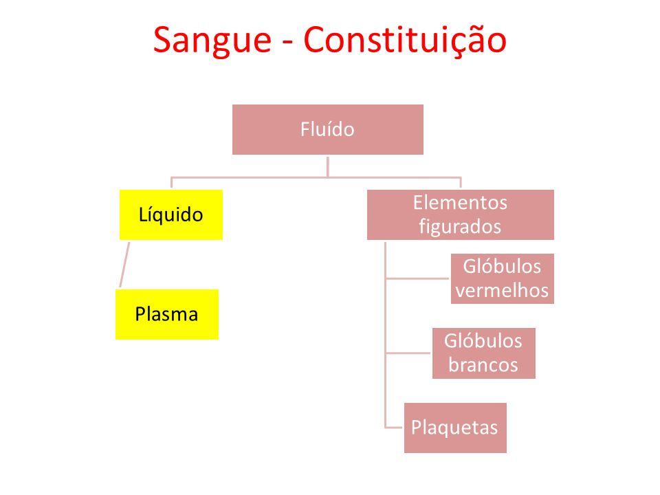 Sangue - Constituição Fluído Líquido Plasma Elementos figurados