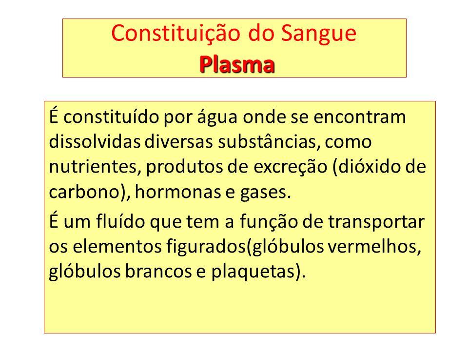 Constituição do Sangue Plasma