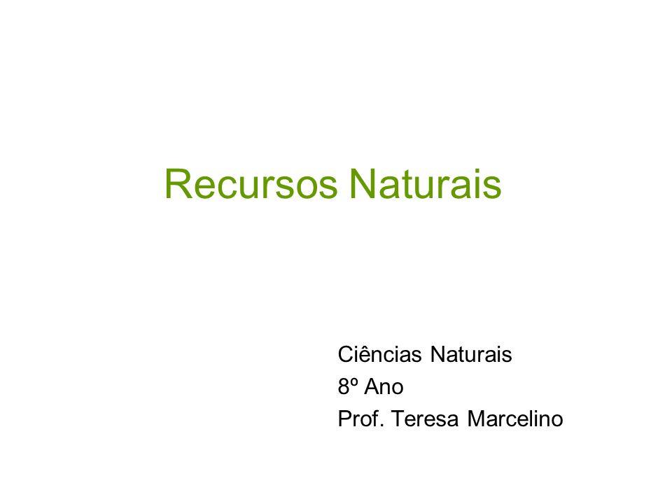 Recursos Naturais Ciências Naturais 8º Ano Prof. Teresa Marcelino