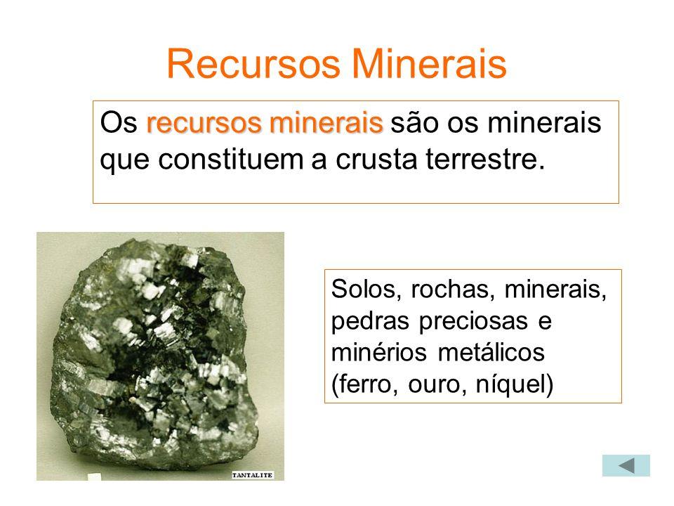 Recursos Minerais Os recursos minerais são os minerais que constituem a crusta terrestre.