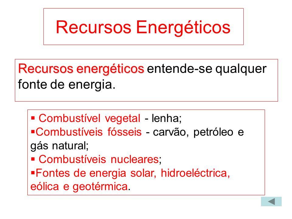 Recursos Energéticos Recursos energéticos entende-se qualquer fonte de energia. Combustível vegetal - lenha;