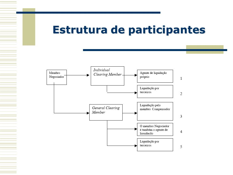 Estrutura de participantes