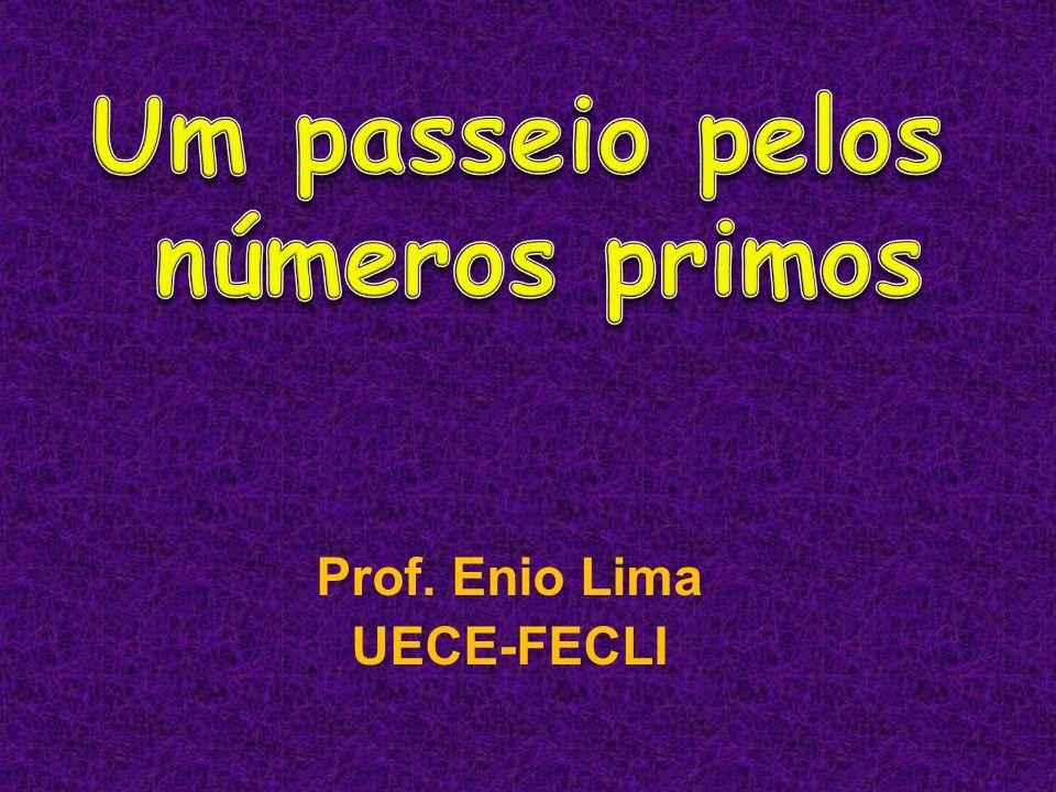 Um passeio pelos números primos