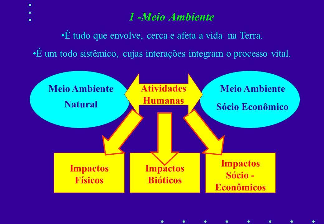 Impactos Sócio -Econômicos